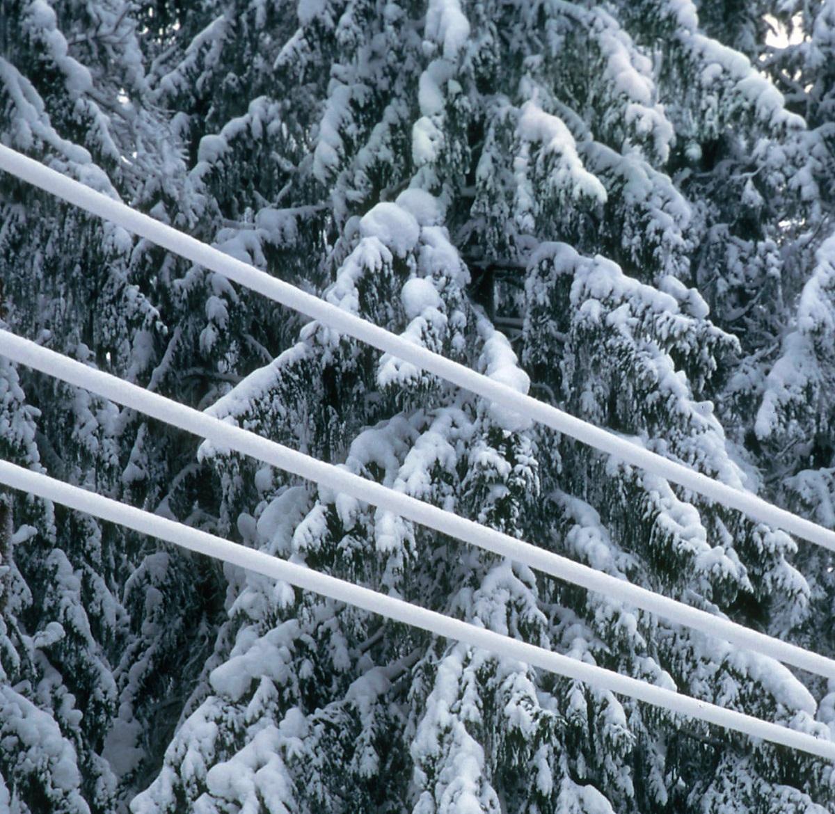 Sähkön jakeluverkko