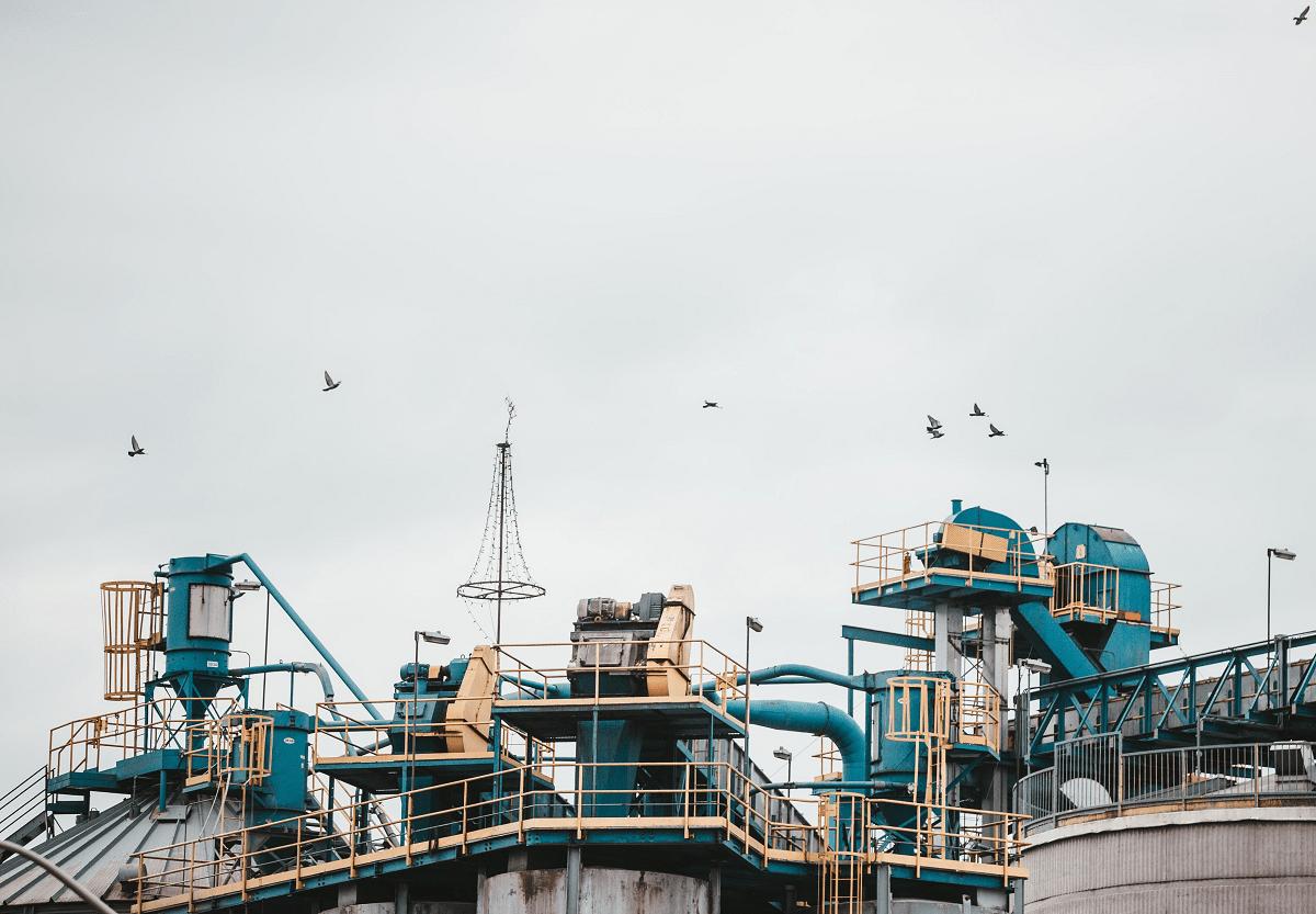 kaasu